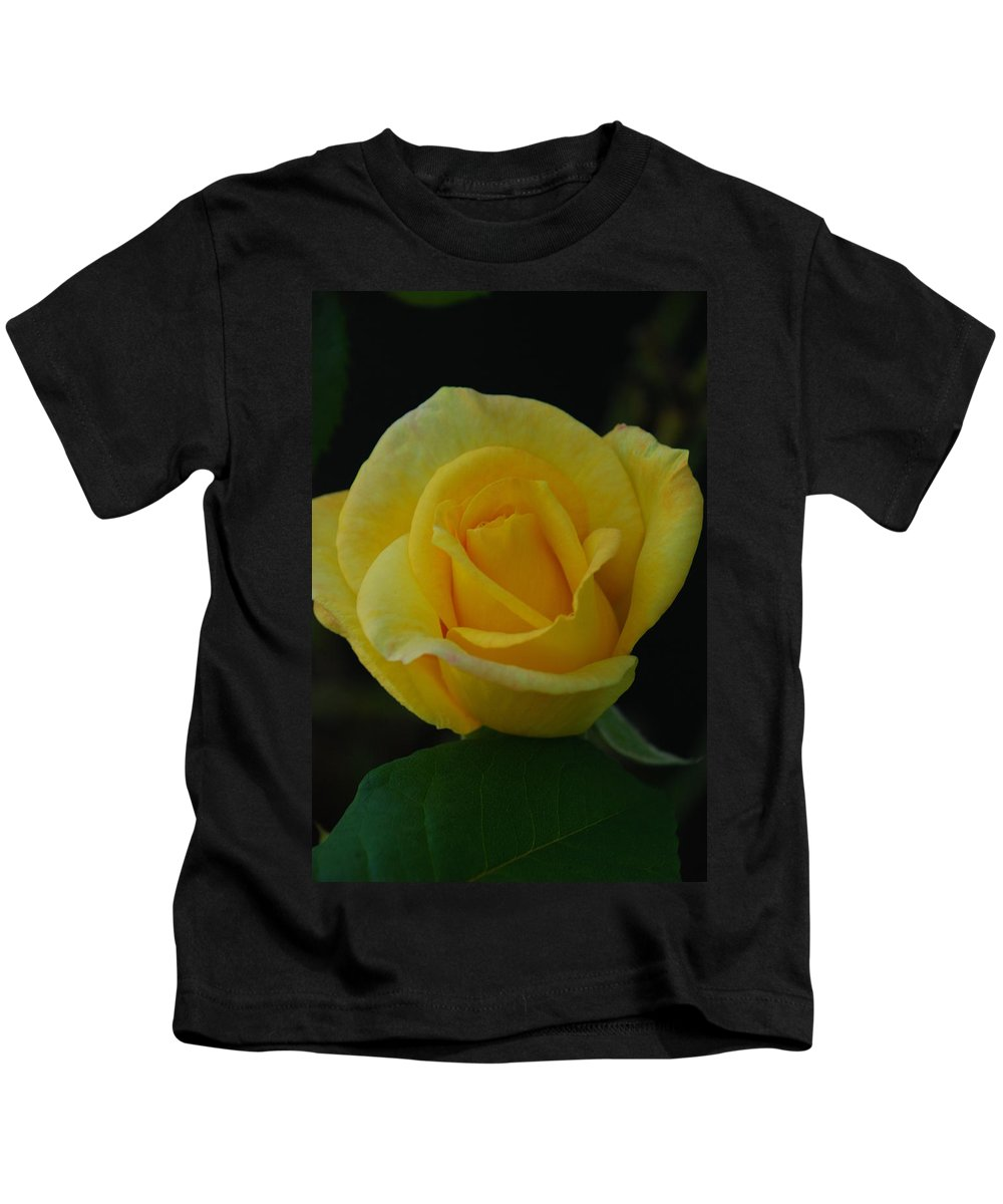 Rose Kids T-Shirt featuring the photograph The Yellow Rose Of Texas by Carol Eliassen