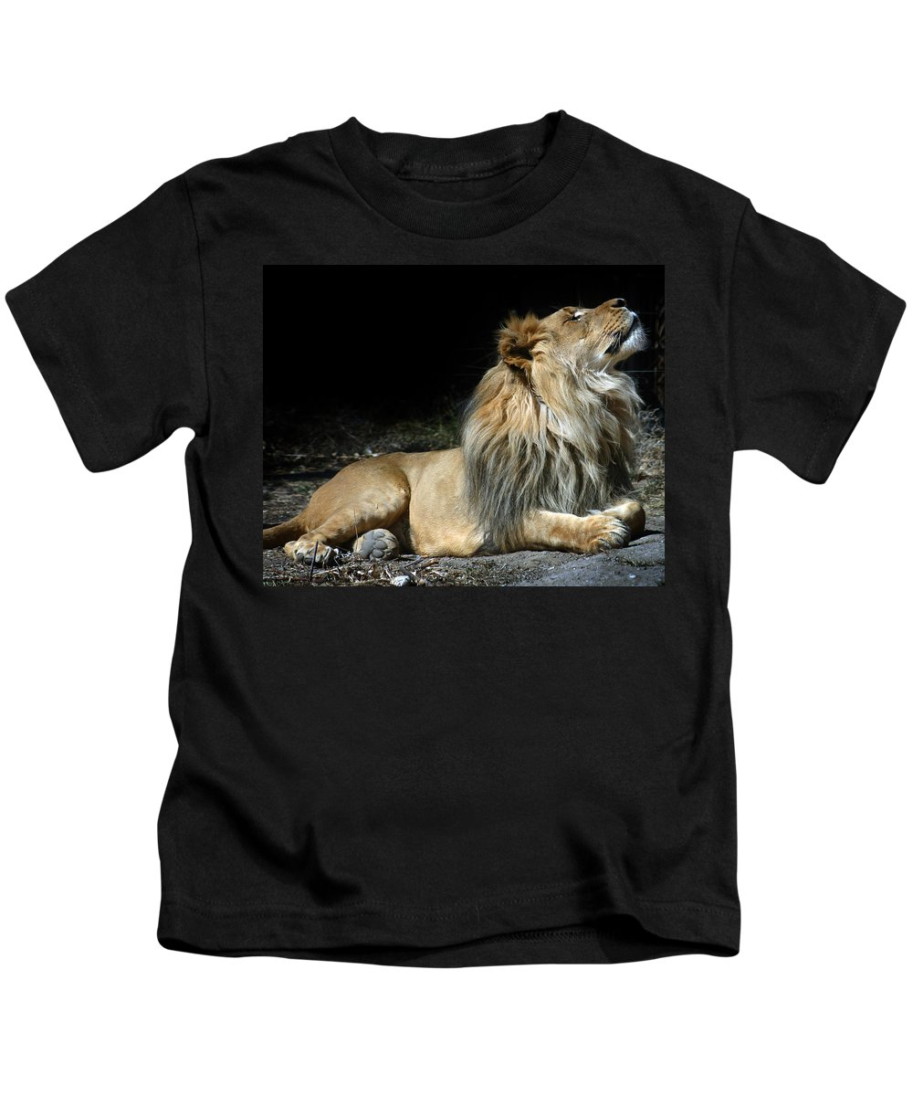 Lion Kids T-Shirt featuring the photograph This Is My Best Side by Anthony Jones