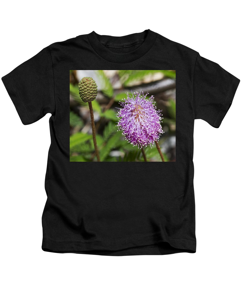 Purple Kids T-Shirt featuring the photograph This Will Become That by Bob Slitzan