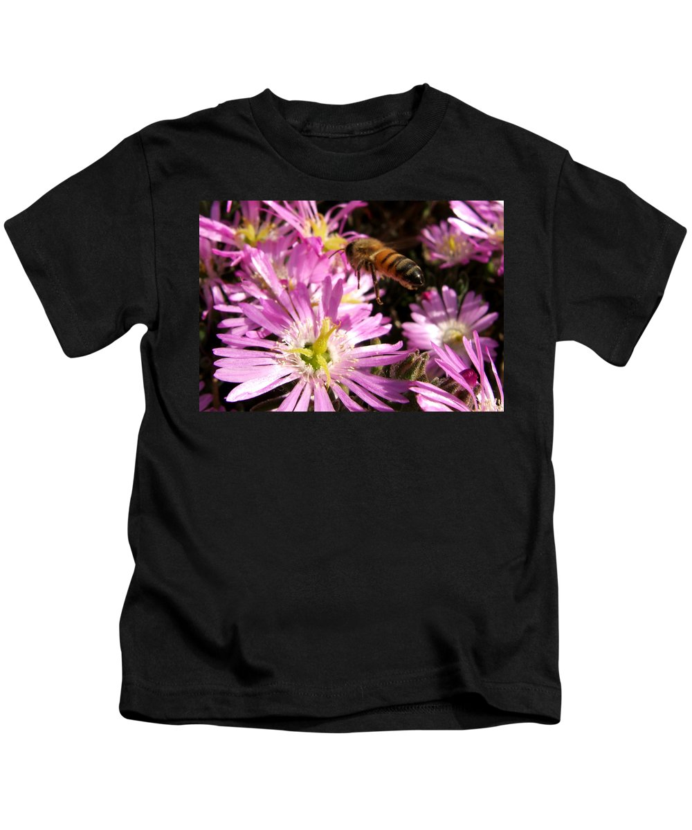 Bee Kids T-Shirt featuring the photograph This Will Do by Chris Brannen