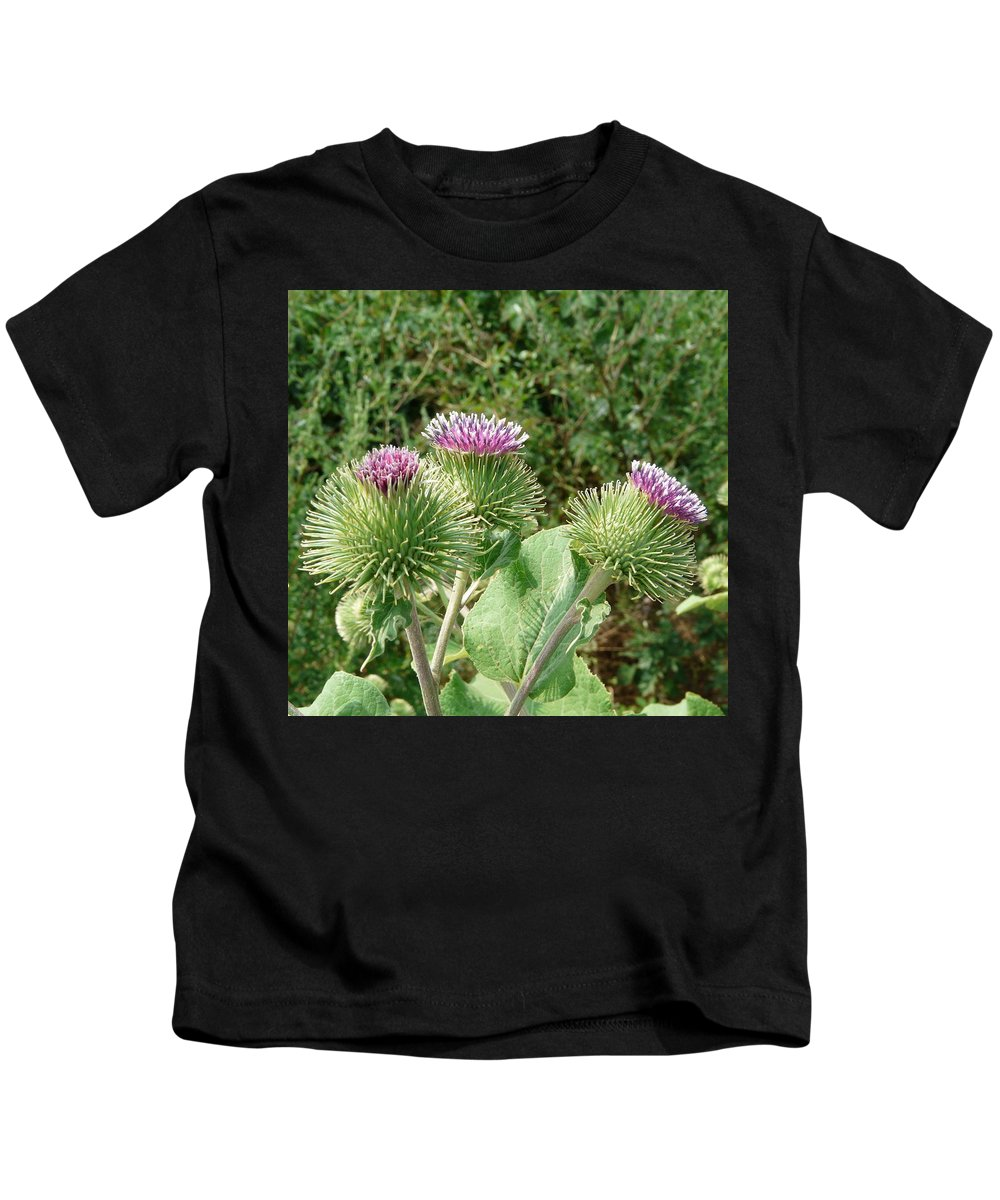 Burdock Kids T-Shirt featuring the photograph Thistle Trinity by Valerie Ornstein