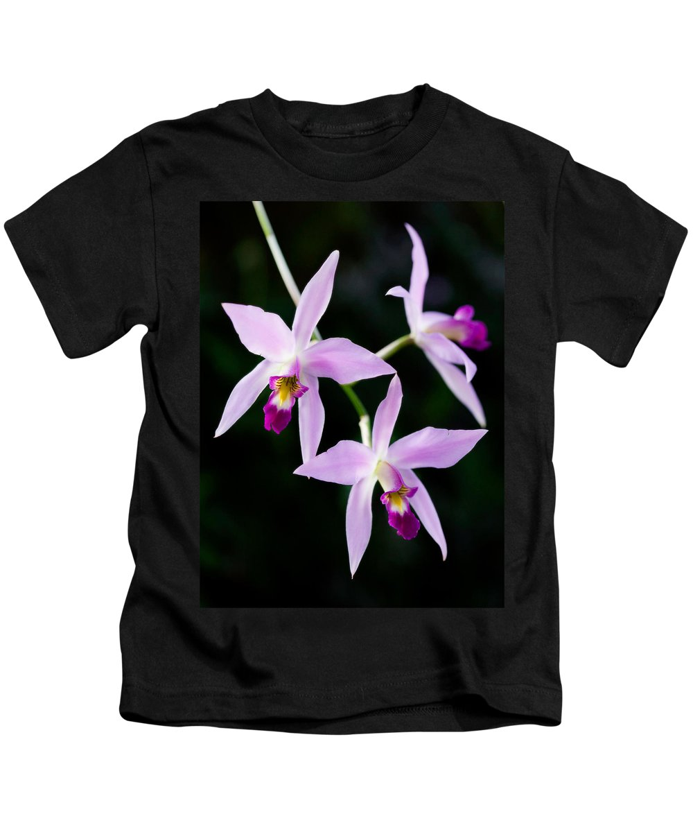 Orchid Kids T-Shirt featuring the photograph Three Orchids by Marilyn Hunt