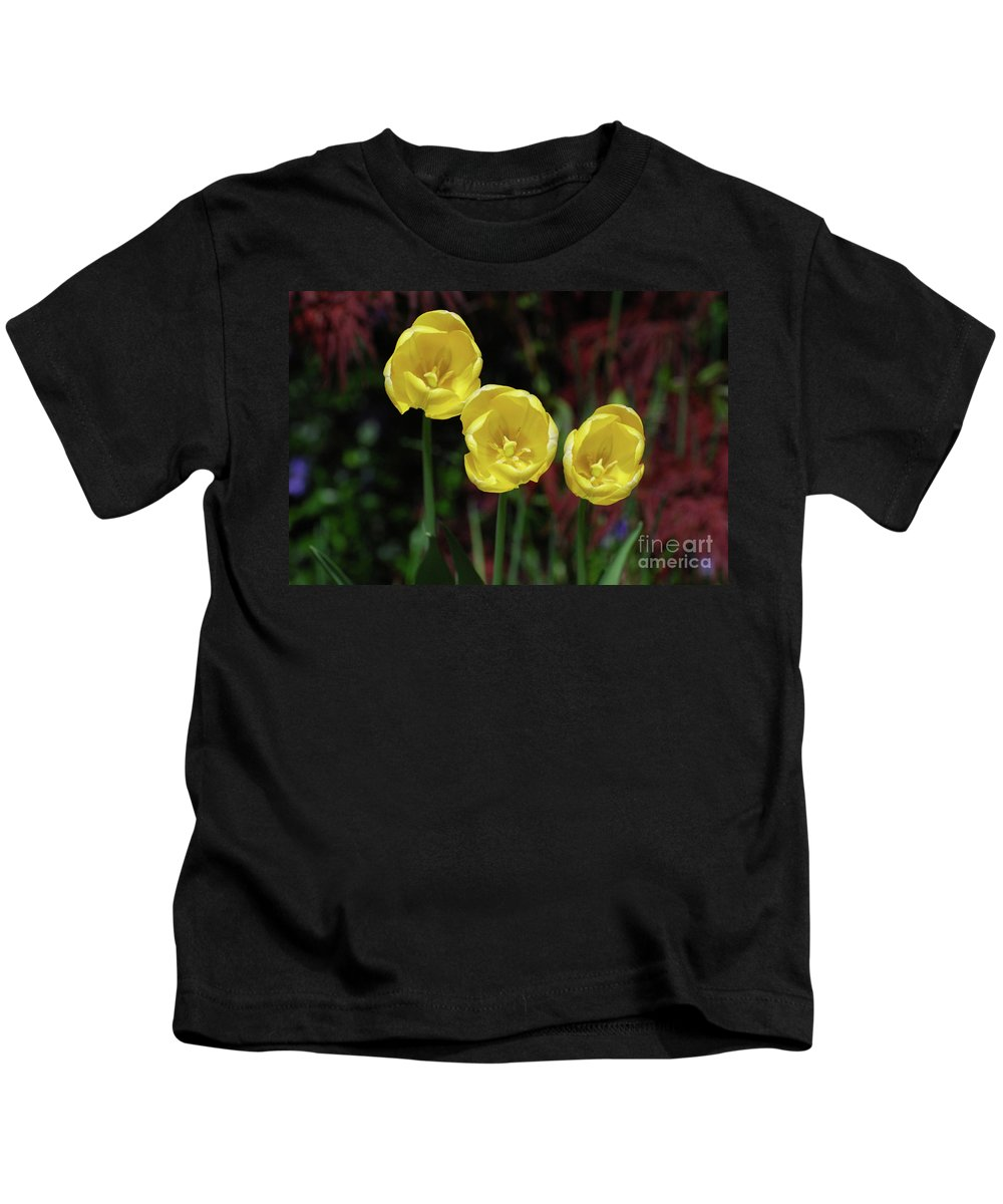 Tulip Kids T-Shirt featuring the photograph Three Pretty Blooming Yellow Tulips In A Garden by DejaVu Designs