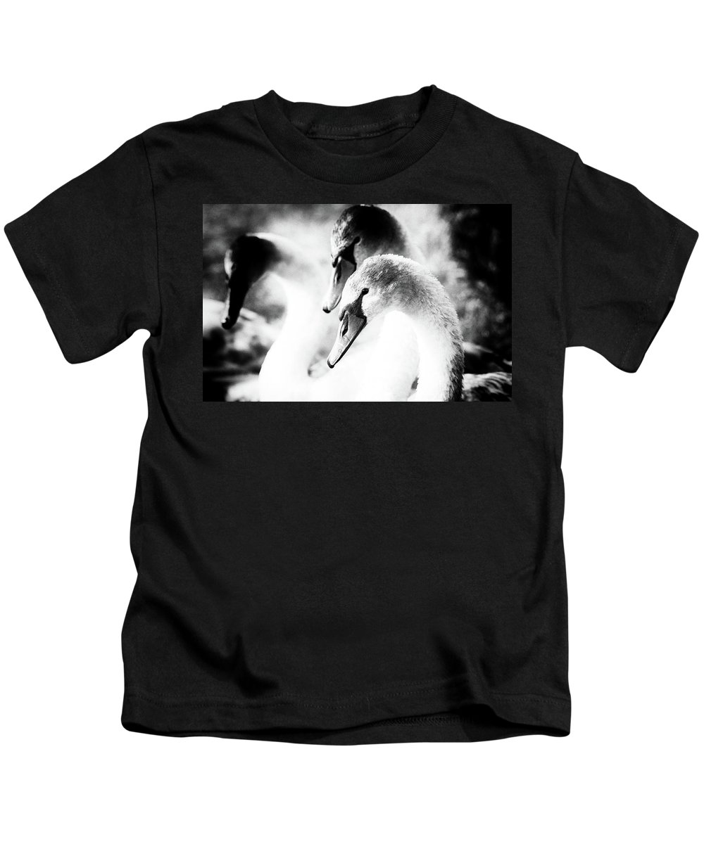 Swans Kids T-Shirt featuring the photograph Three Swans by Cliff Norton
