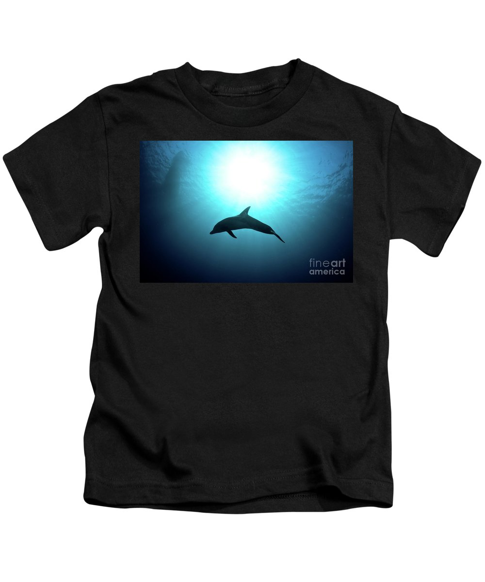 Dolphin Kids T-Shirt featuring the photograph three year old Dolphin by Hagai Nativ
