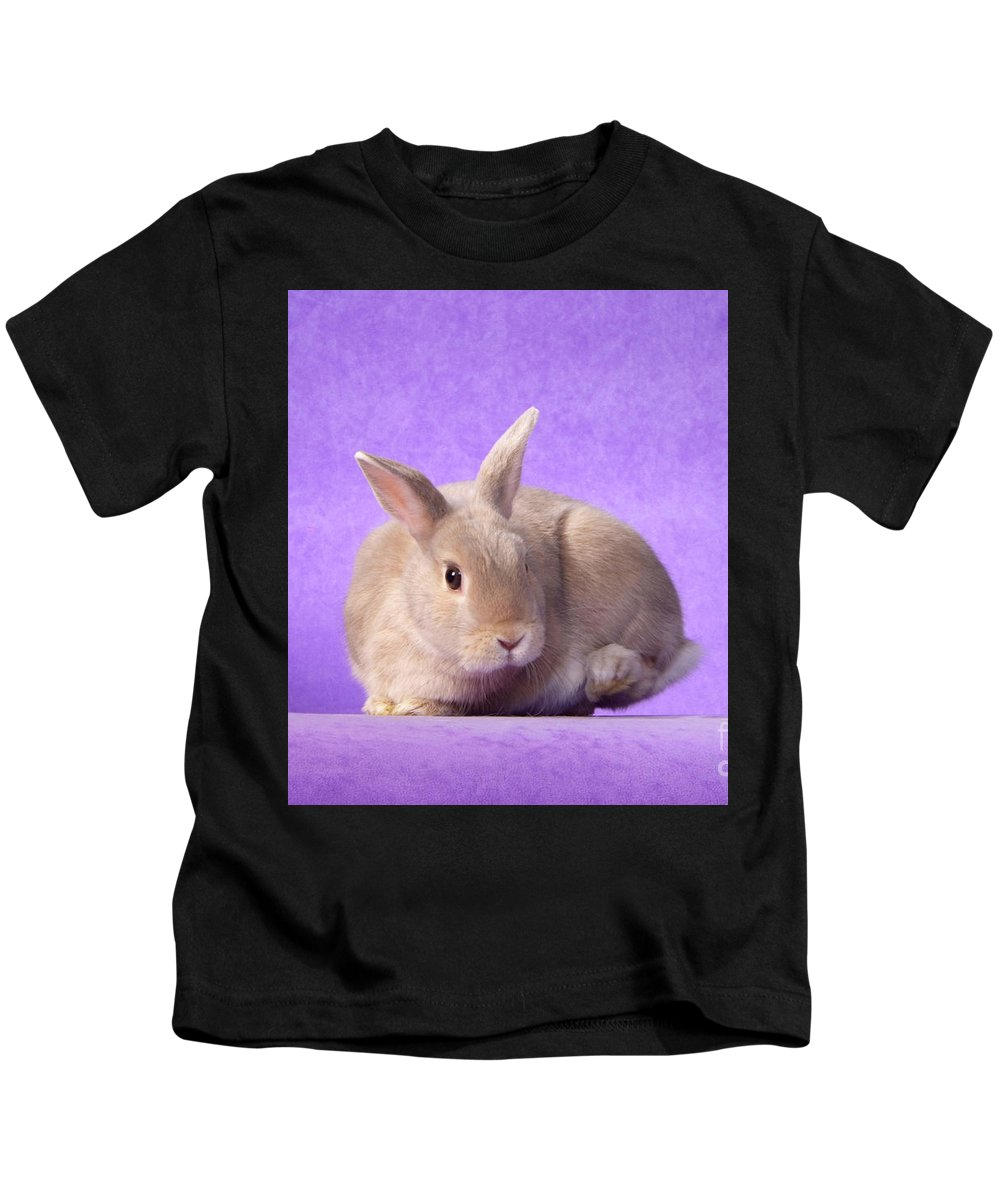 Gold Kids T-Shirt featuring the photograph Thump Gorgeous Dwarf Rabbit Stamps His Foot by Bright Eyes Studio