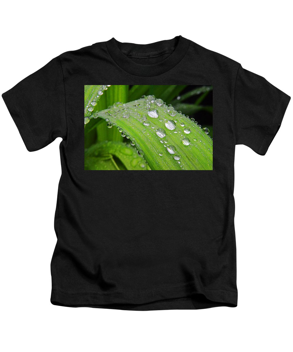 Tiger Lily Kids T-Shirt featuring the photograph Tiger Drops by Nature's Journey Photography