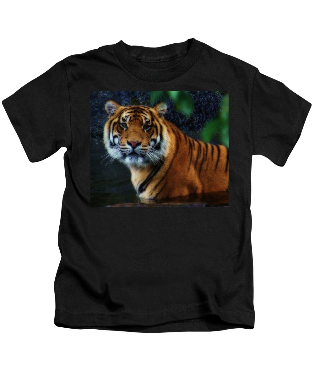 Animals Kids T-Shirt featuring the photograph Tiger Land by Kym Clarke