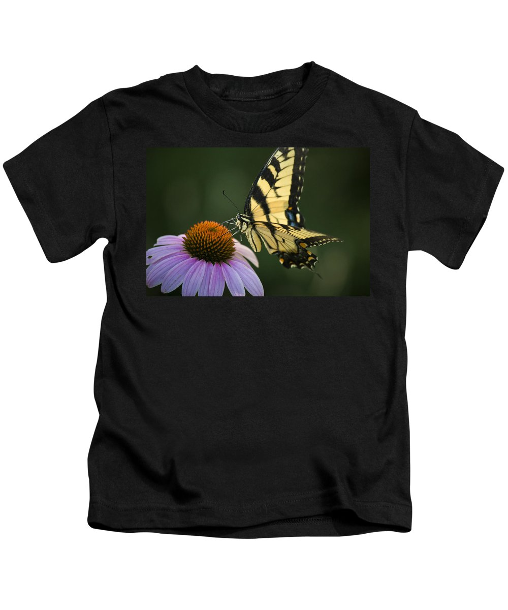 Butterfly Kids T-Shirt featuring the photograph Tiger Swallowtail 1 by Teresa Mucha