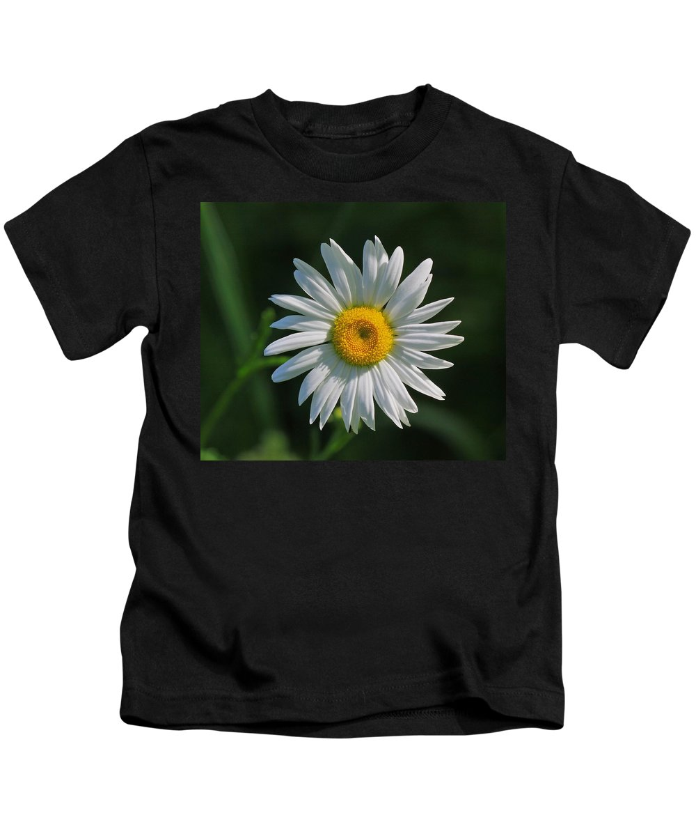 Related Tags: Flowers Artwork Kids T-Shirt featuring the photograph Tiny Sunshine by Robert Pearson