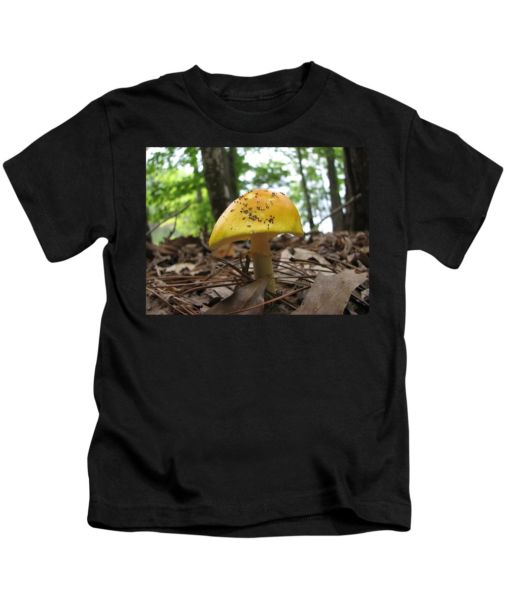 Toad Stool Kids T-Shirt featuring the photograph Toad Stool IIi by Stacey May