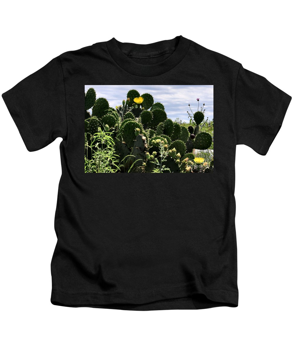 Cactus Kids T-Shirt featuring the photograph Too Many Good Points by Maris Salmins