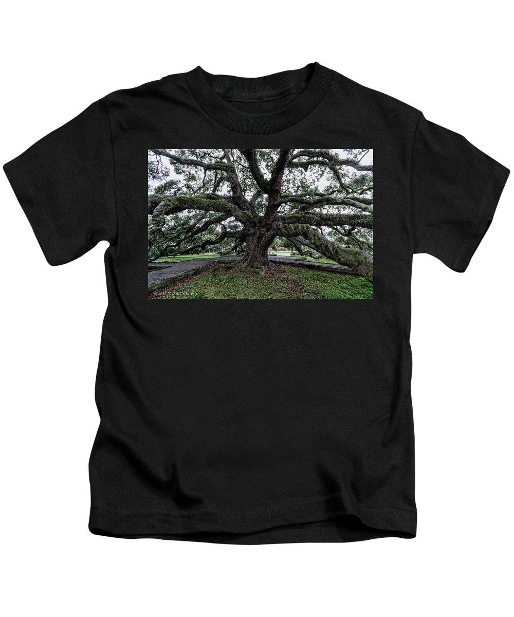 Jacksonville Florida Kids T-Shirt featuring the photograph Treaty Oak 12 14 2015 029 by Chuck Walla