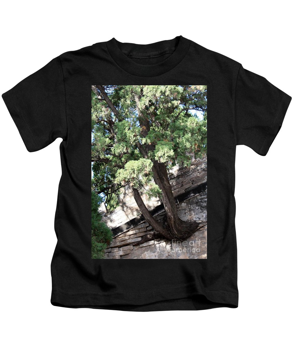China Kids T-Shirt featuring the photograph Tree Growing through Wall by Carol Groenen