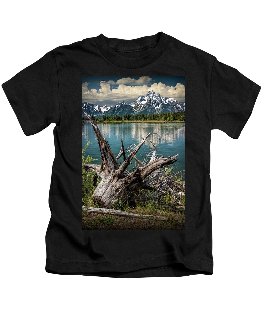 Art Kids T-Shirt featuring the photograph Tree Stump On The Northern Shore Of Jackson Lake At Grand Teton National Park by Randall Nyhof