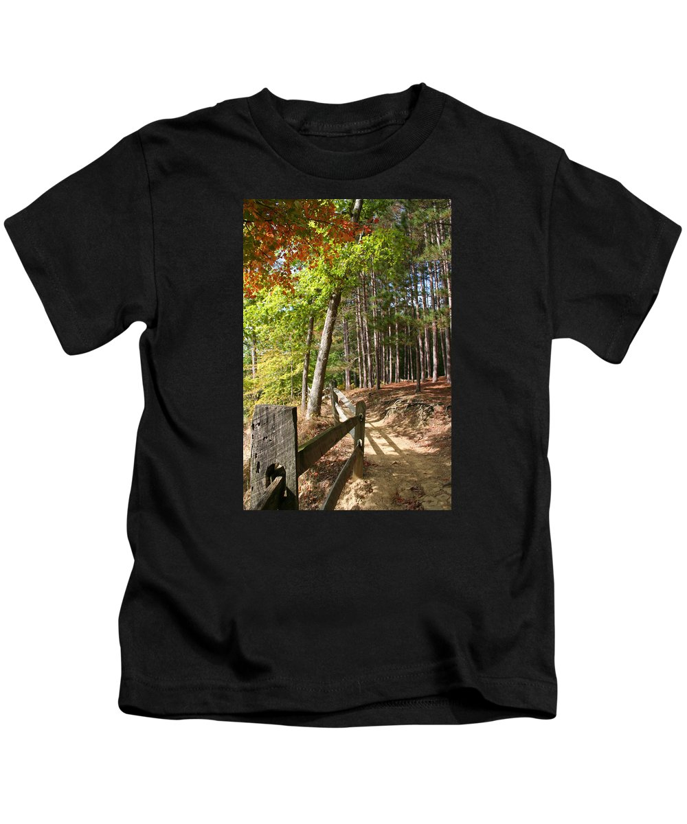Tree Kids T-Shirt featuring the photograph Tree Trail by Margie Wildblood