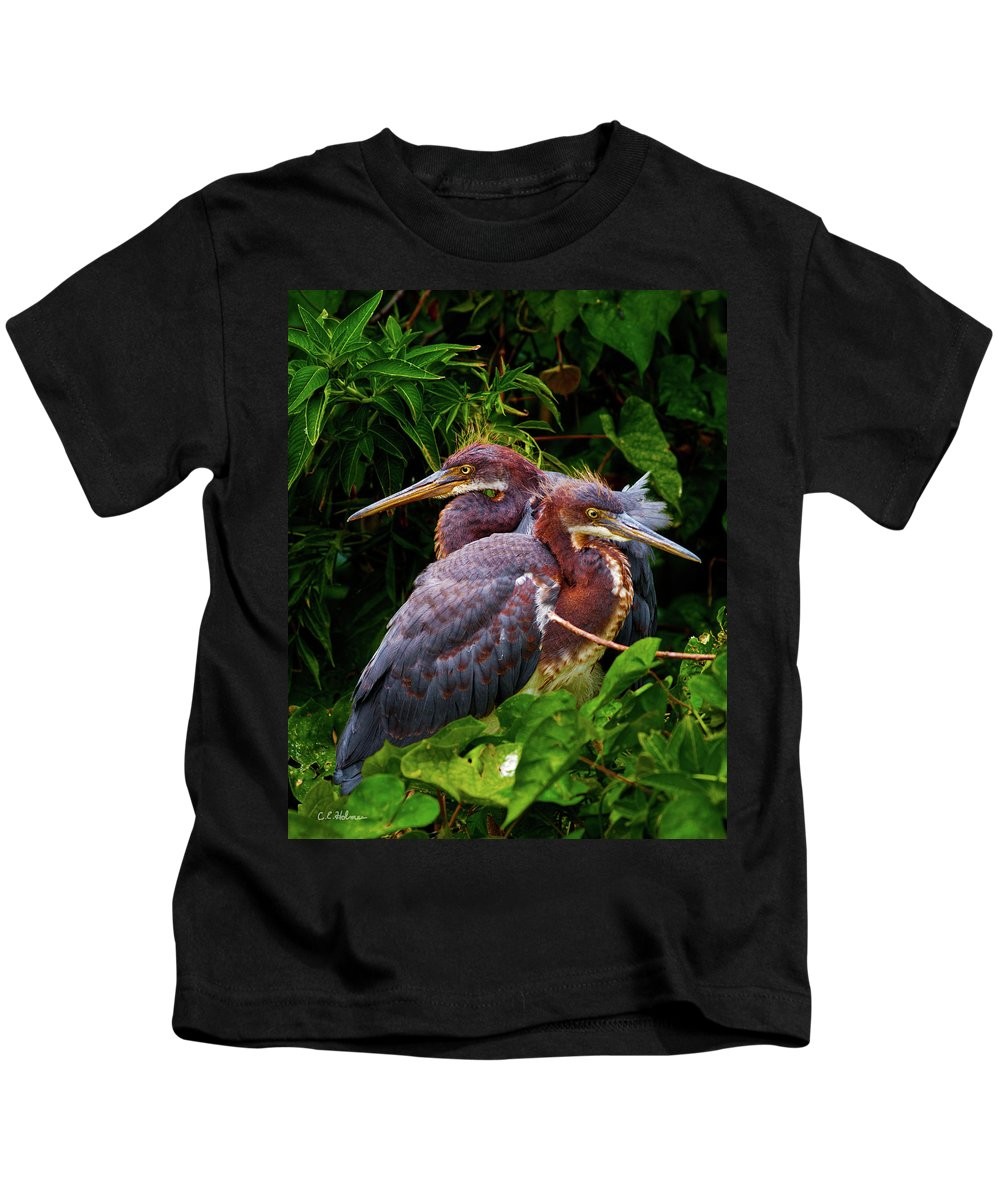 Birds Kids T-Shirt featuring the photograph Tricolored Siblings by Christopher Holmes