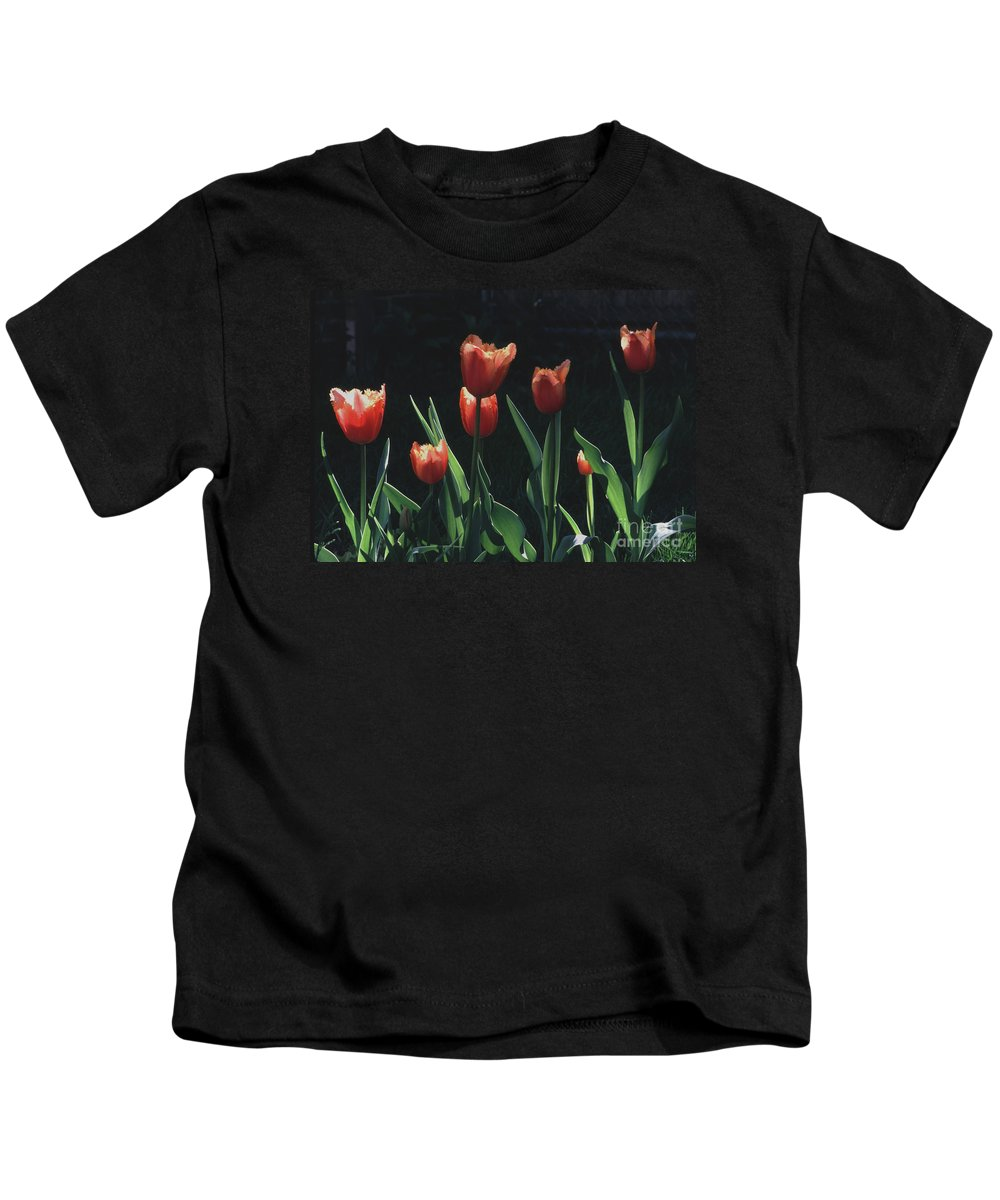 Dutch Kids T-Shirt featuring the photograph Tulip Red Flair by Tom Wurl