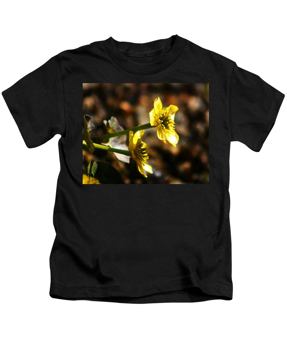 Wild Flowers Kids T-Shirt featuring the photograph Tundra Rose by Anthony Jones