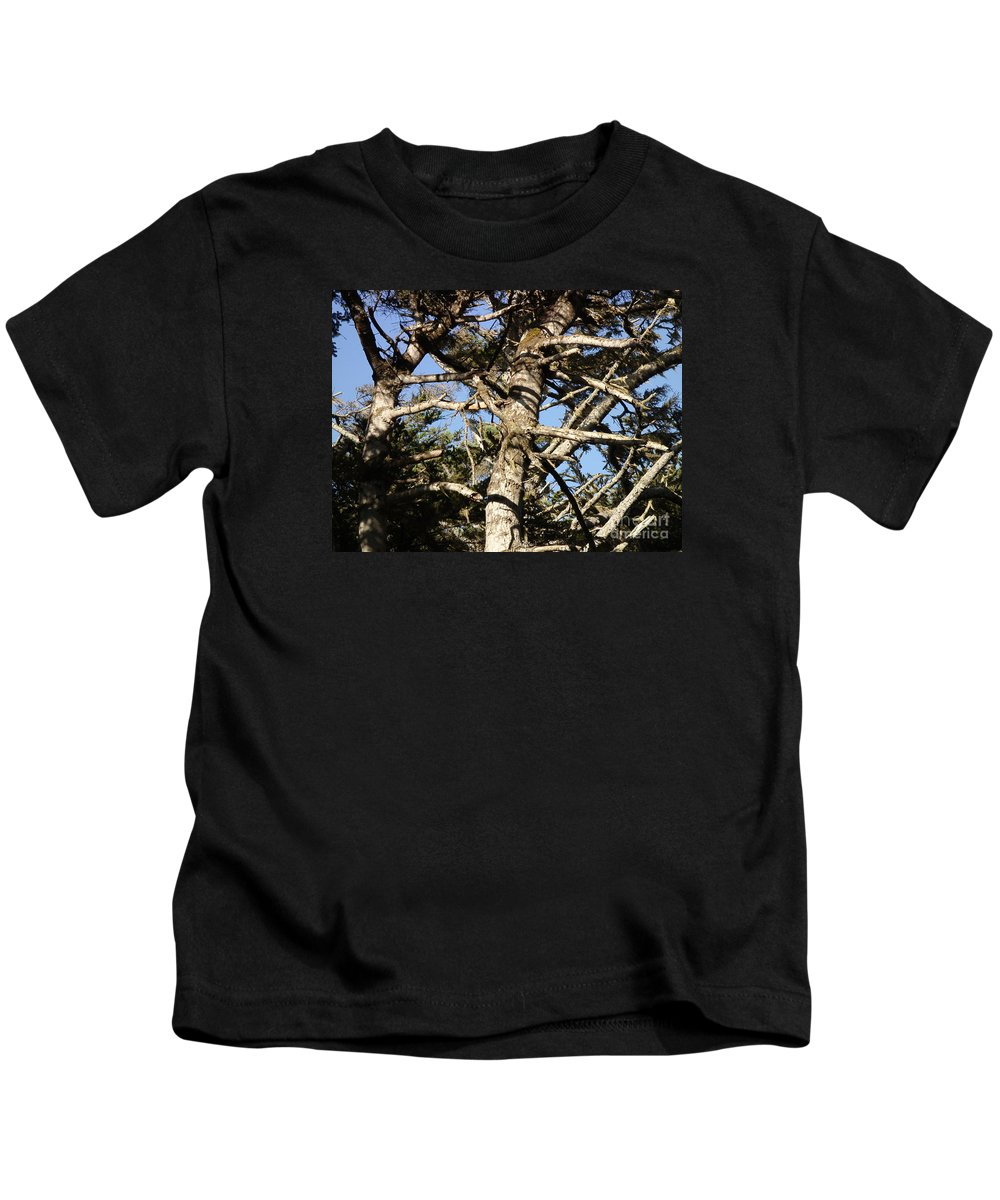 Tree Kids T-Shirt featuring the photograph Twisted Branches by Cassandra Geernaert