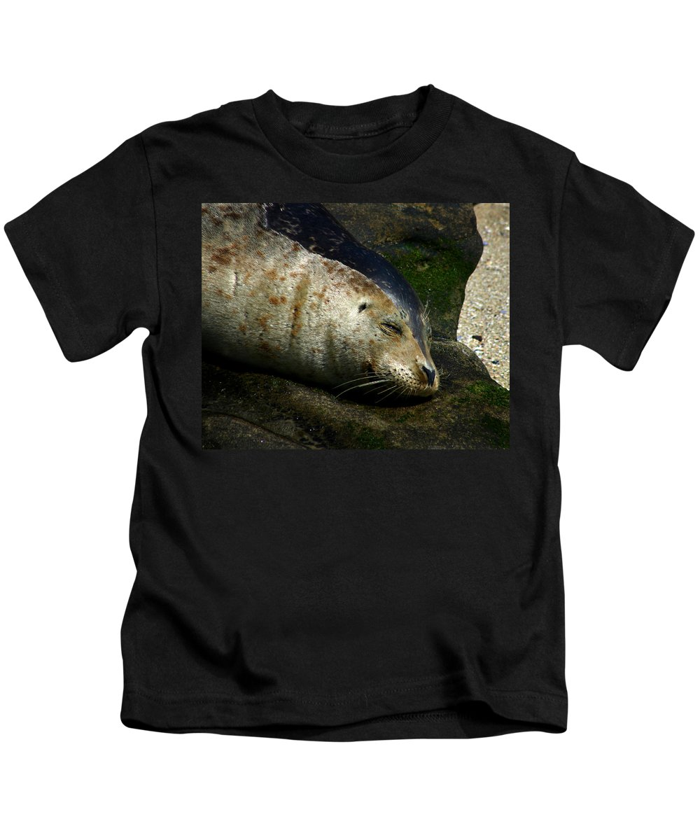 Seal Kids T-Shirt featuring the photograph Two Tone Seal by Anthony Jones