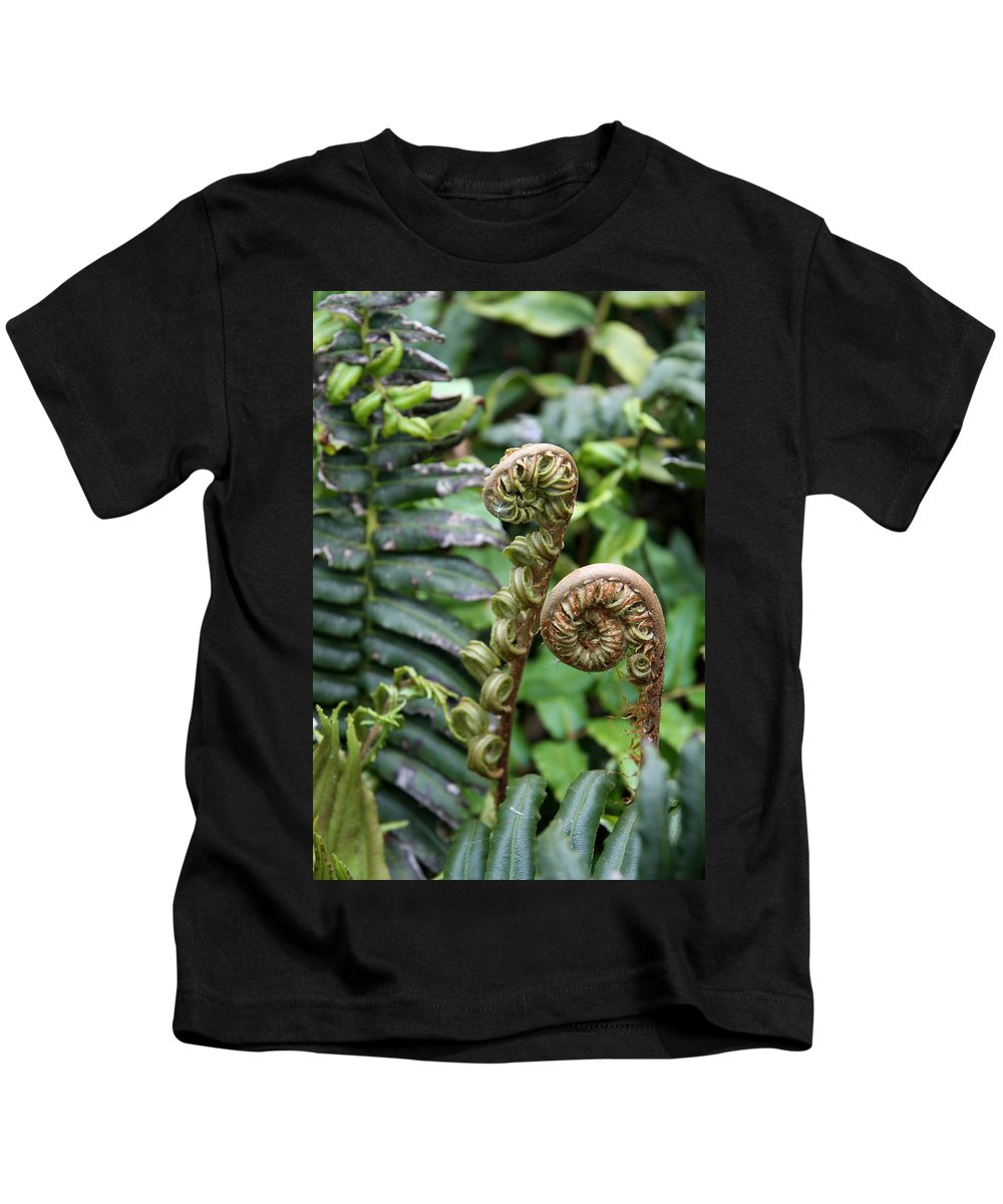 Fern Kids T-Shirt featuring the photograph Unfolding by Christiane Schulze Art And Photography