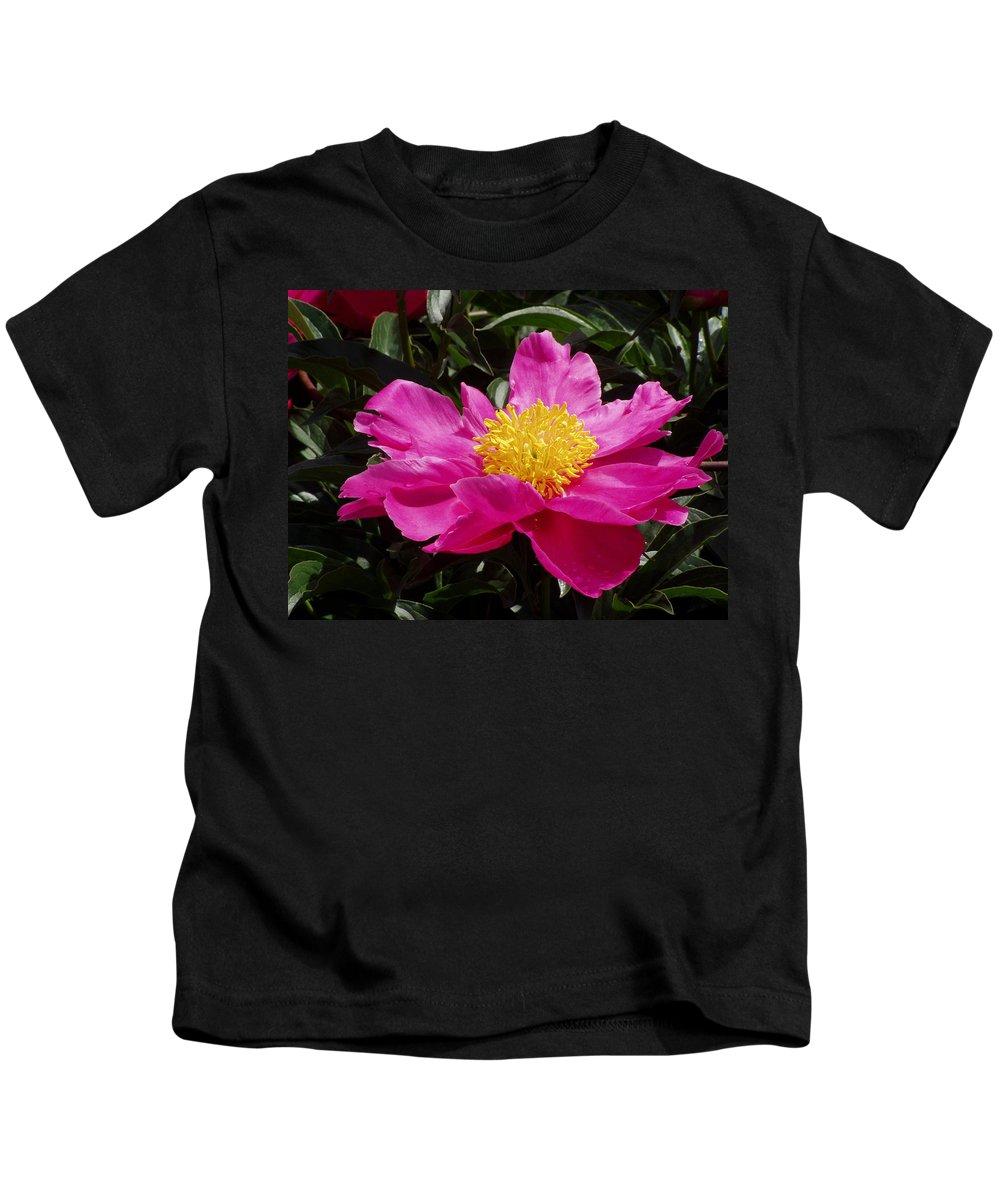 Rose Kids T-Shirt featuring the photograph Unfolding by Ian MacDonald