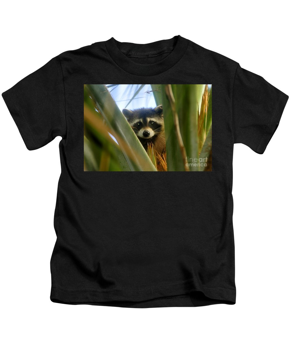 Raccoon Kids T-Shirt featuring the photograph Up A Tree by David Lee Thompson