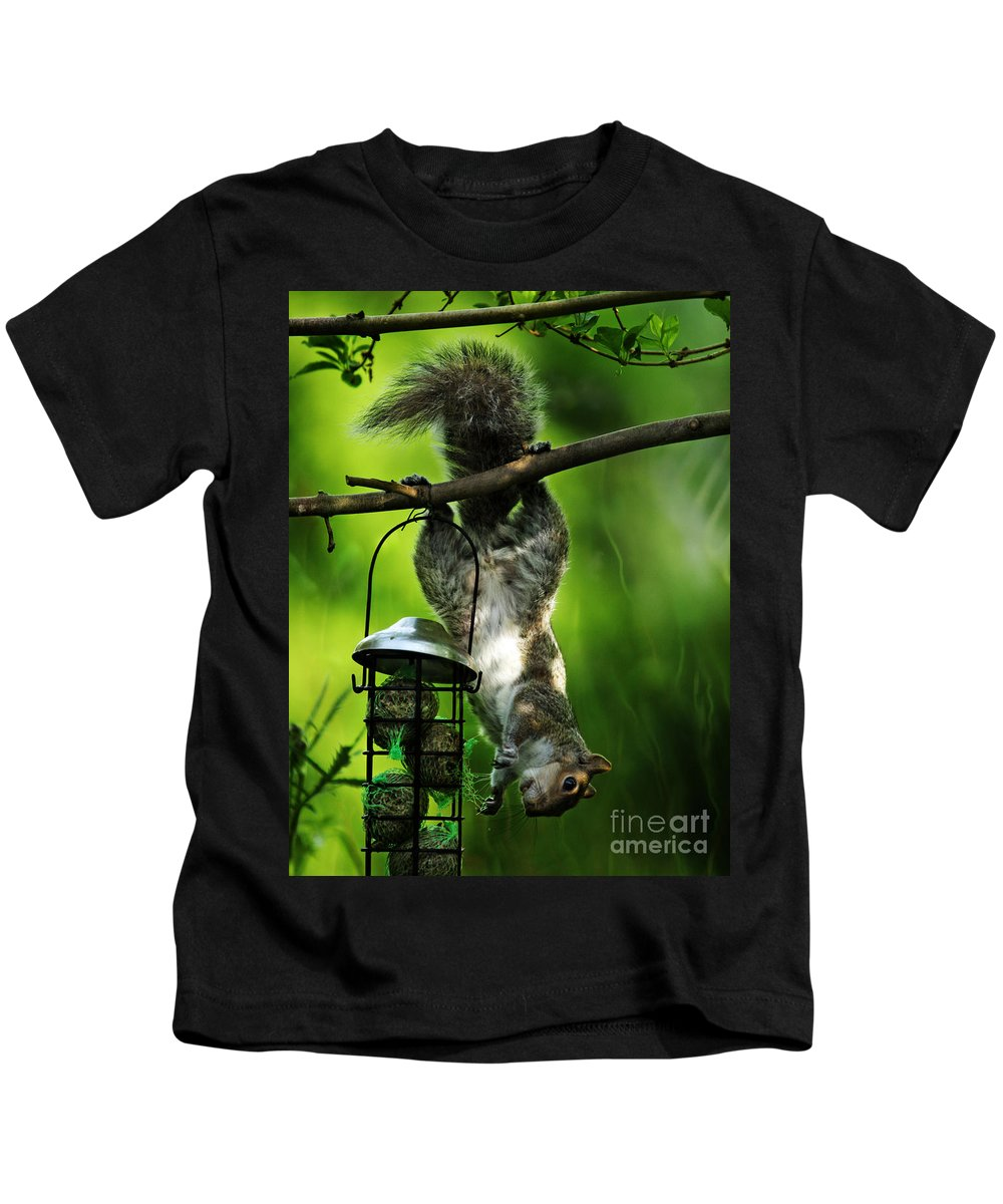 Squirrel Kids T-Shirt featuring the photograph Upside Down by Angel Tarantella
