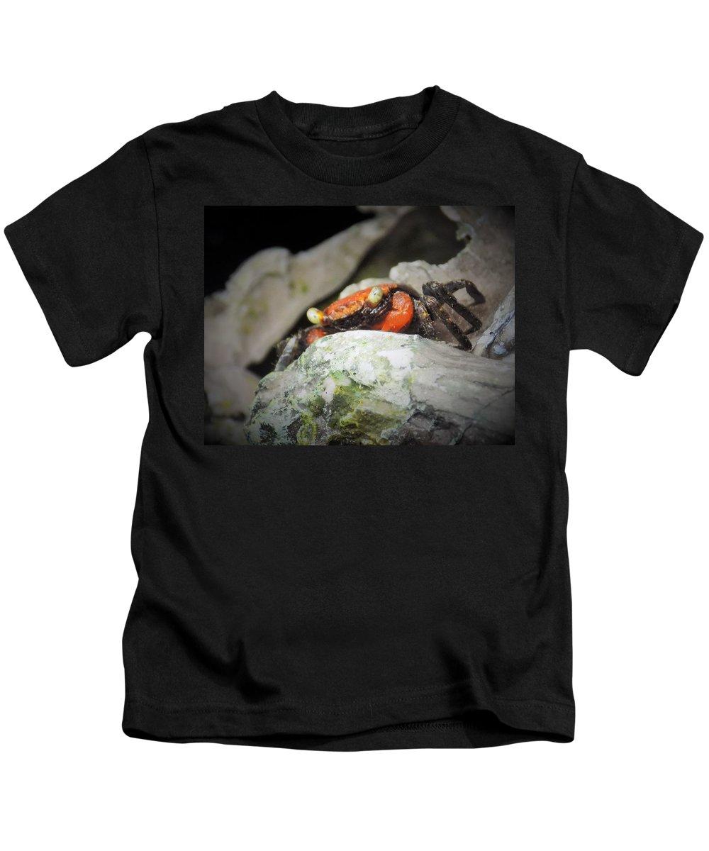 Crab Kids T-Shirt featuring the photograph Vampire Crab by Sarah Barba