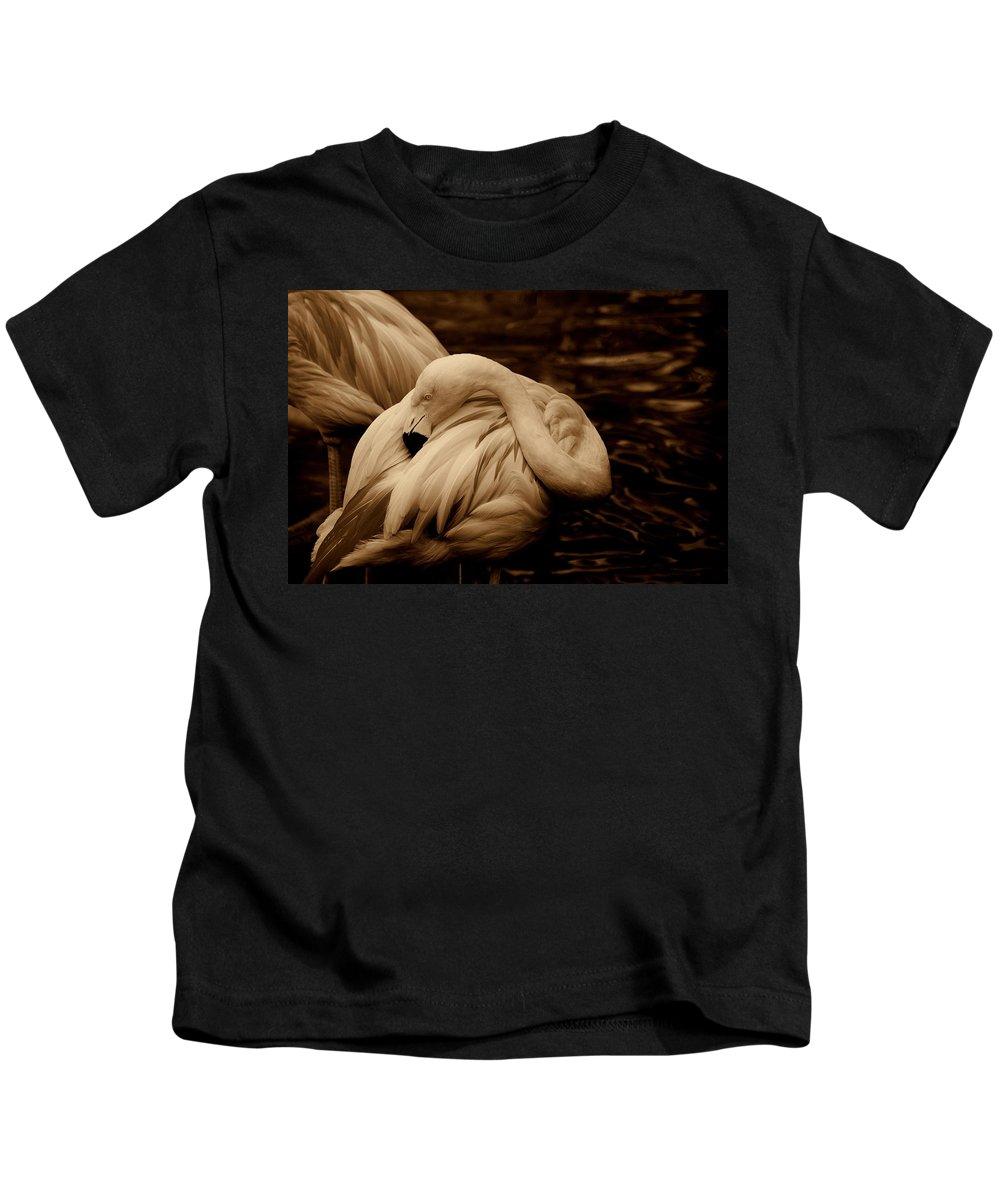Flamingo Kids T-Shirt featuring the photograph Vanity II by Susanne Van Hulst