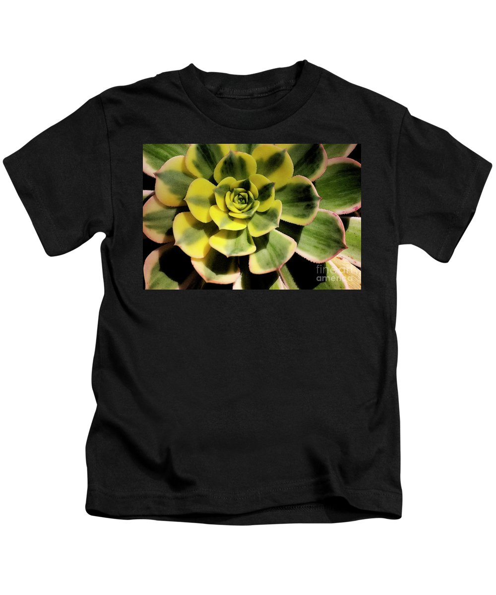 Variegated Kids T-Shirt featuring the photograph Variegated Succulent by Jim And Emily Bush