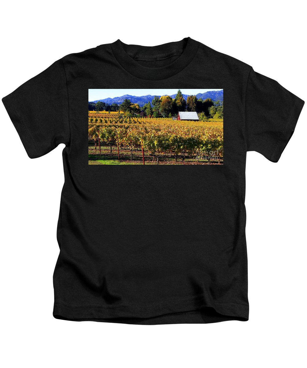 Napa Valley Kids T-Shirt featuring the photograph Vineyard 4 by Xueling Zou