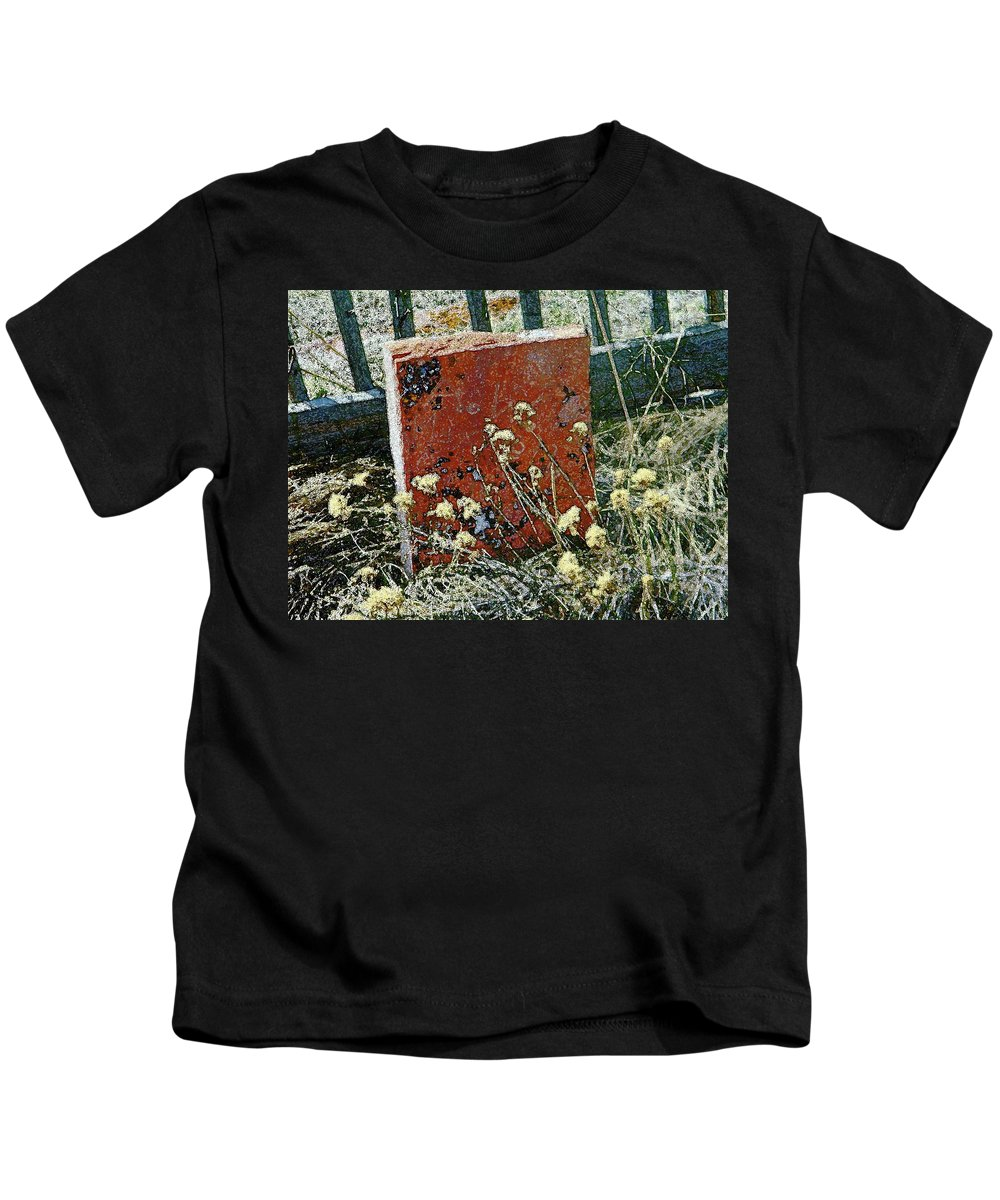 Abstract Kids T-Shirt featuring the photograph Virginia Dale - The Handwriting On The Red Stone by Lenore Senior
