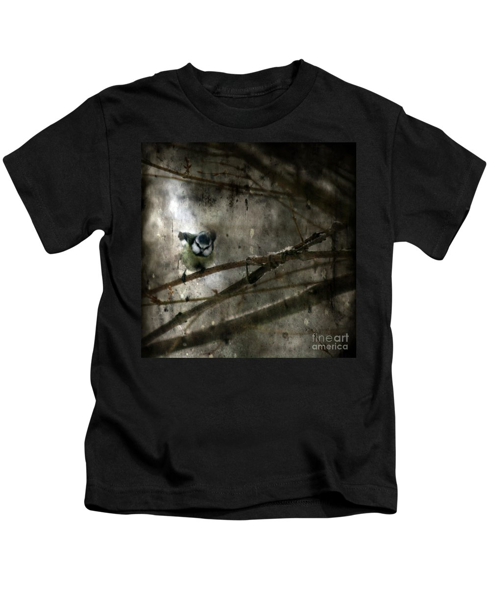 Blue Tit Kids T-Shirt featuring the photograph Waiting For Spring by Angel Ciesniarska