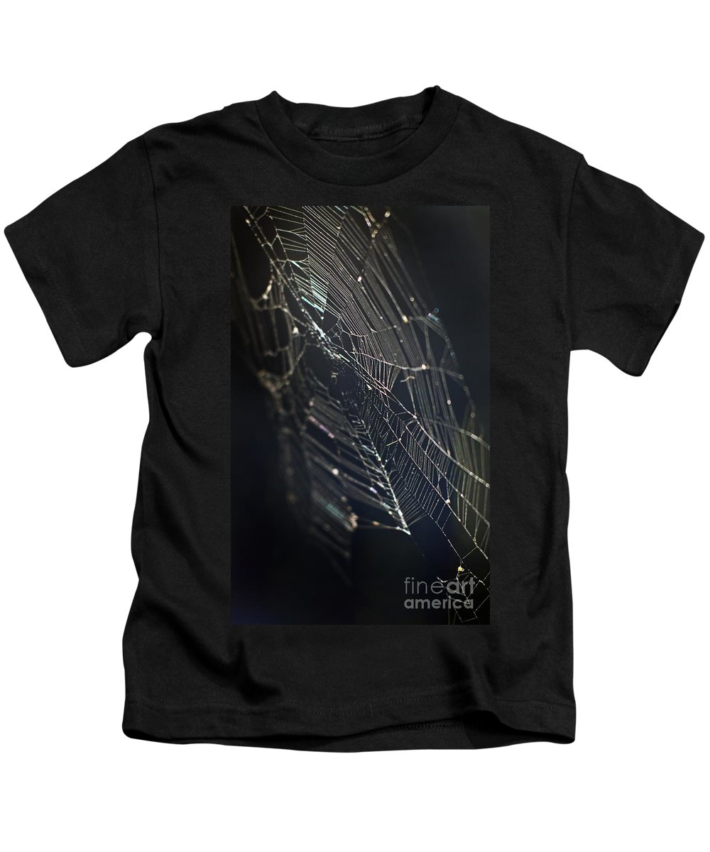 Spider Webs Kids T-Shirt featuring the photograph Waiting... by Norman Andrus