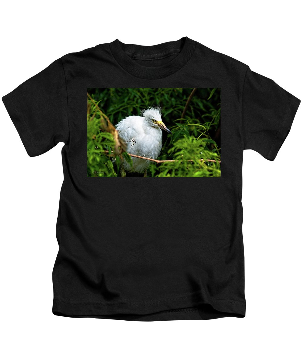 Egret Kids T-Shirt featuring the photograph Waiting Patiently by Christopher Holmes