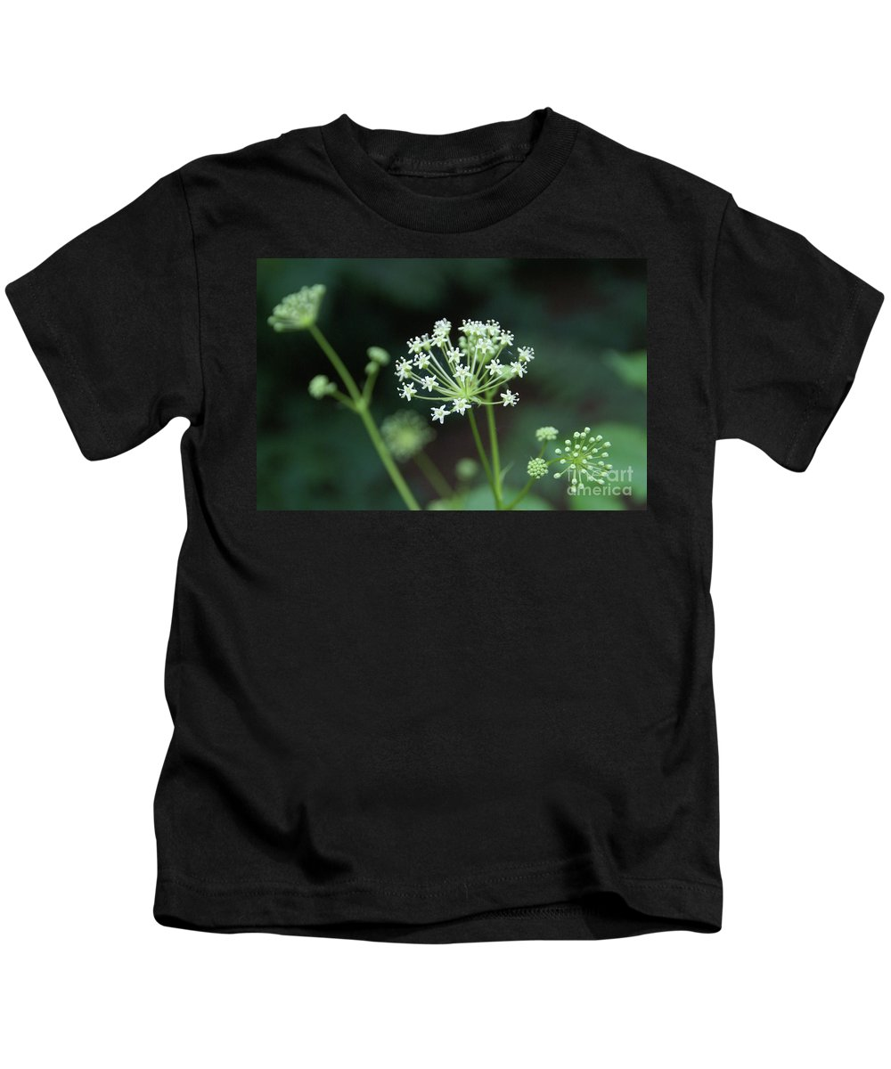Wildflower Kids T-Shirt featuring the photograph Web Design by Linda Shafer