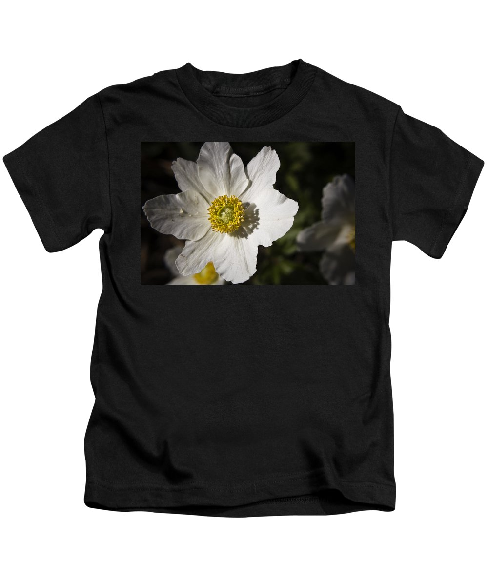 Flower Kids T-Shirt featuring the photograph White Anemone by Teresa Mucha