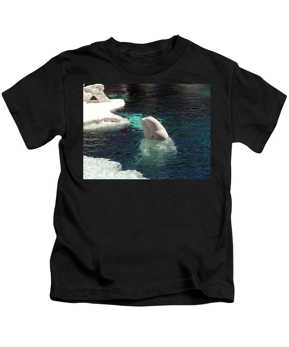Whale Kids T-Shirt featuring the photograph White Beluga Whale 3 by Angelina Vick