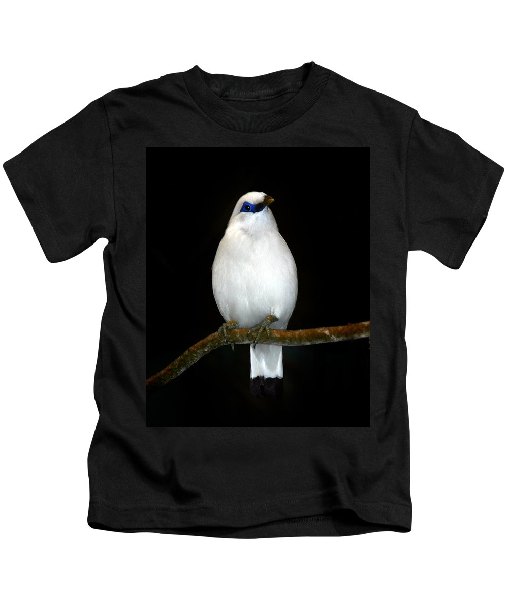 Bird Kids T-Shirt featuring the photograph White Bird by Anthony Jones