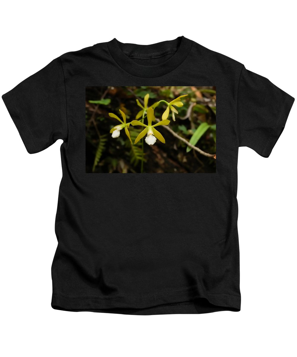 Orchid Kids T-Shirt featuring the photograph White Butterfly Orchid by Rich Leighton