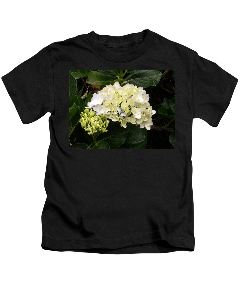 Flower Kids T-Shirt featuring the photograph White Hydrangeas by Amy Fose
