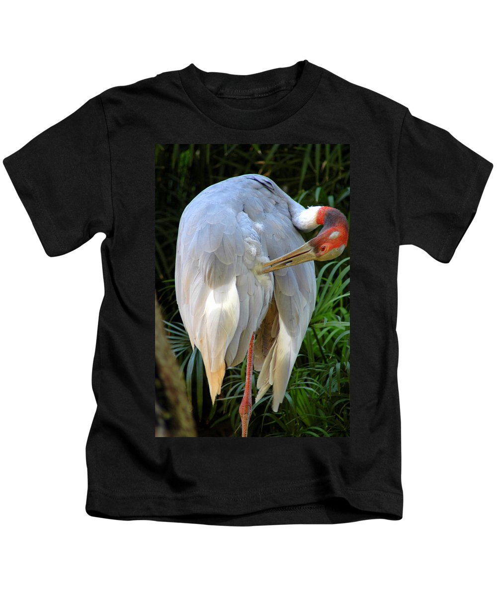 Long Legged Kids T-Shirt featuring the photograph White Ibis At The Zoo by Teresa Stallings