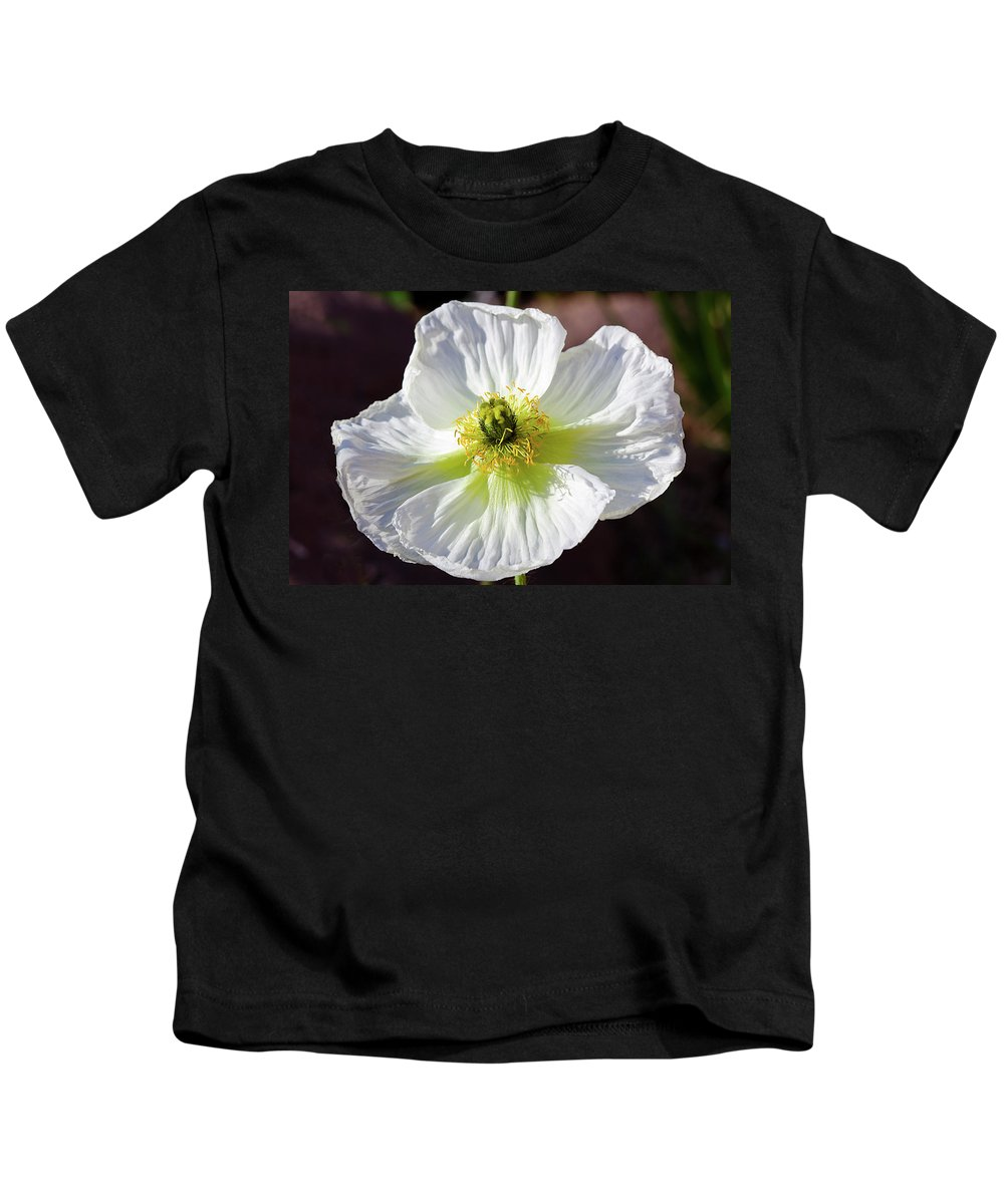 Flower Kids T-Shirt featuring the photograph White Poppy by Phyllis Denton