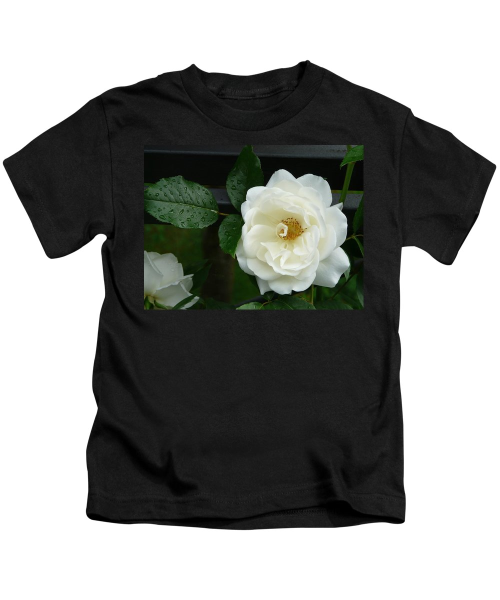 Rose Kids T-Shirt featuring the photograph White Rose by Valerie Ornstein