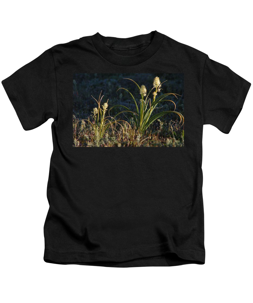 Wild Flowers Kids T-Shirt featuring the photograph Wild Flowers by Jerry McElroy