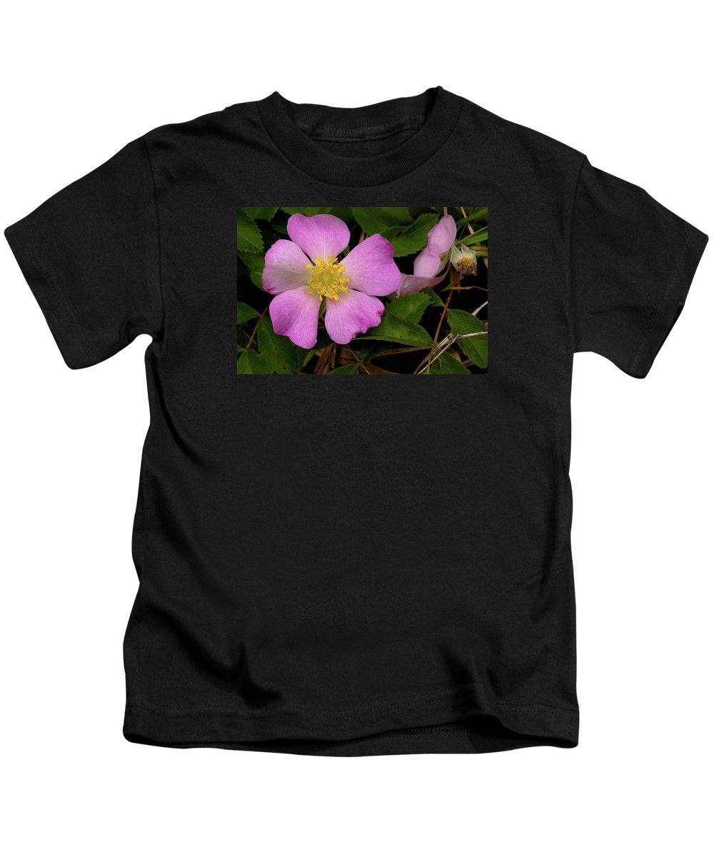 Rose Kids T-Shirt featuring the photograph Wild Rose by Grant Groberg