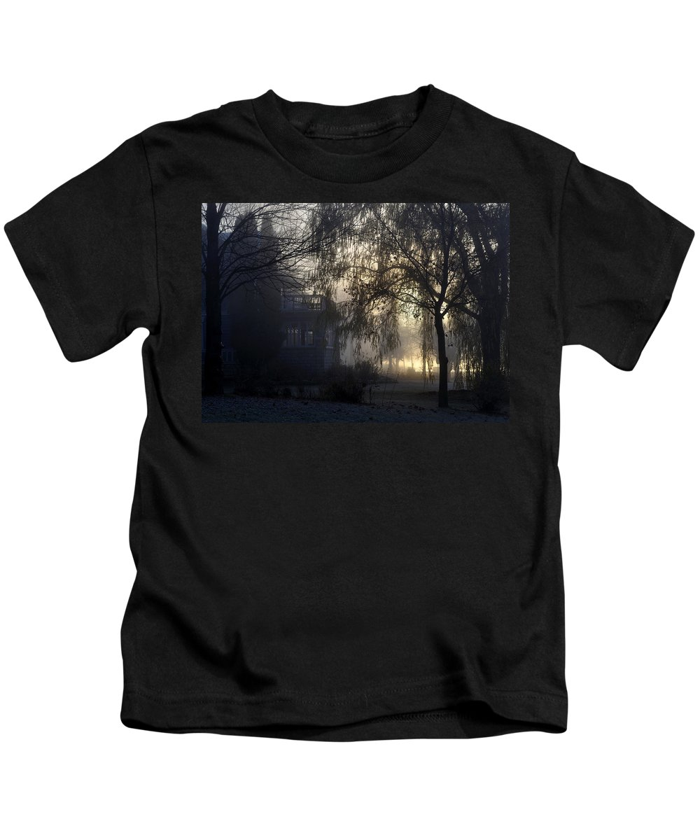 Fog Kids T-Shirt featuring the photograph Willow In Fog by Tim Nyberg