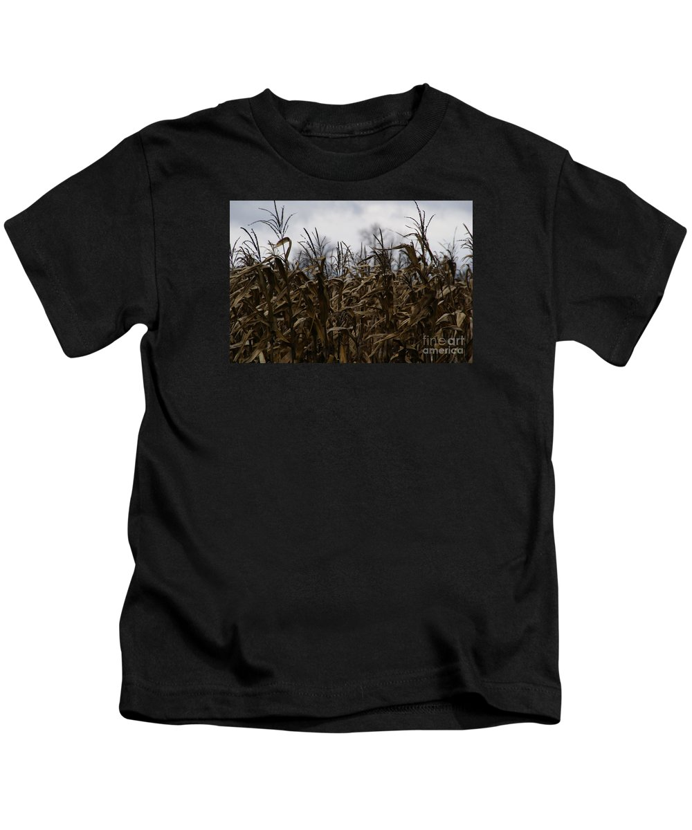 Corn Kids T-Shirt featuring the photograph Wind Blown by Linda Shafer